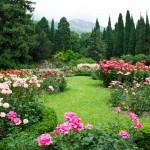 © Tryfonov - Fotolia.com (Rose Garden/#54839164