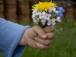 Vatertag-Blumen